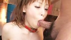 Japanesegirl blowjob swallows