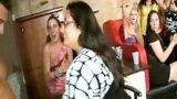 Sexy Blondes & Brunettes Suck On Hard Stripper Cock